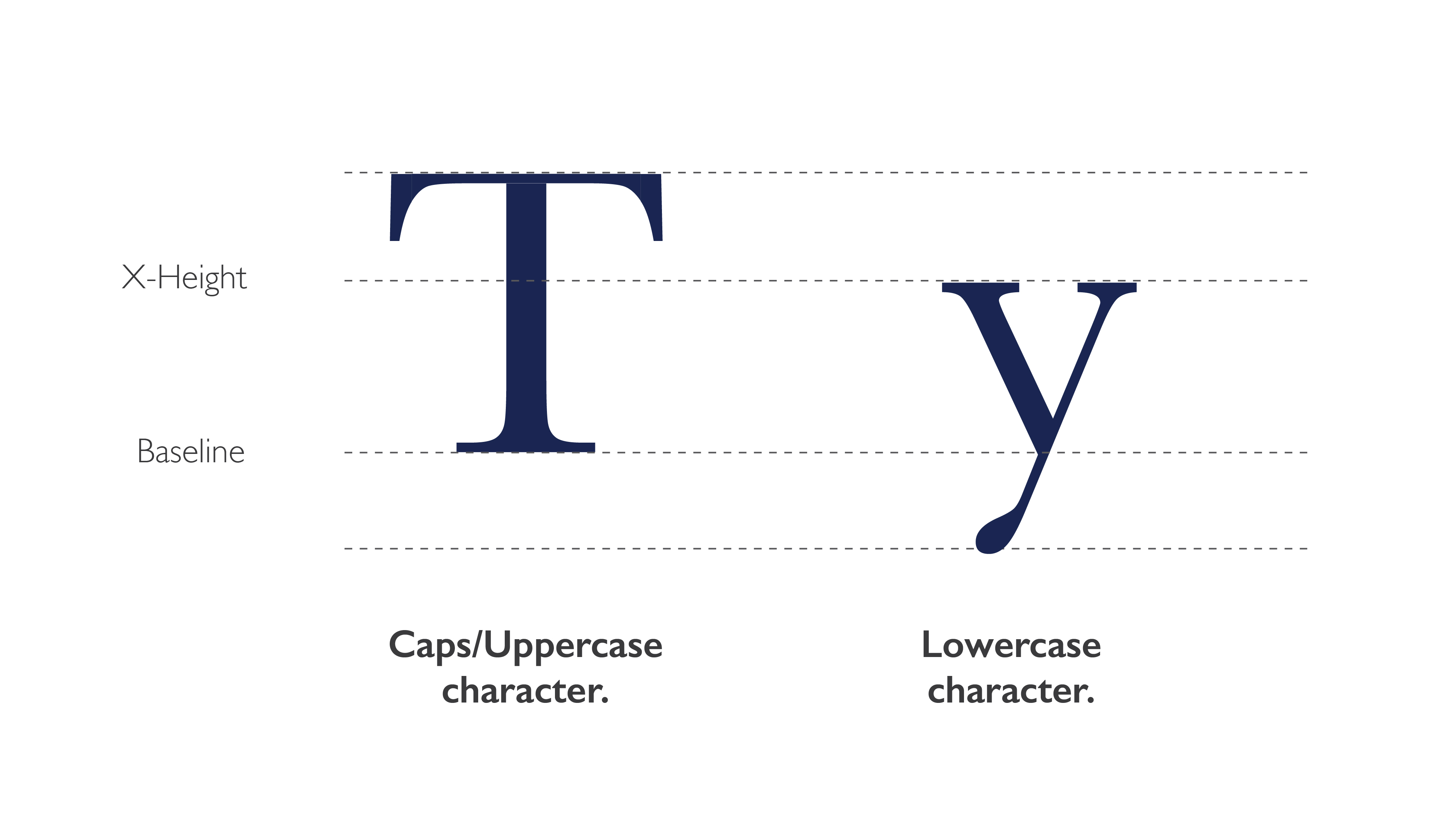 type anatomy case example