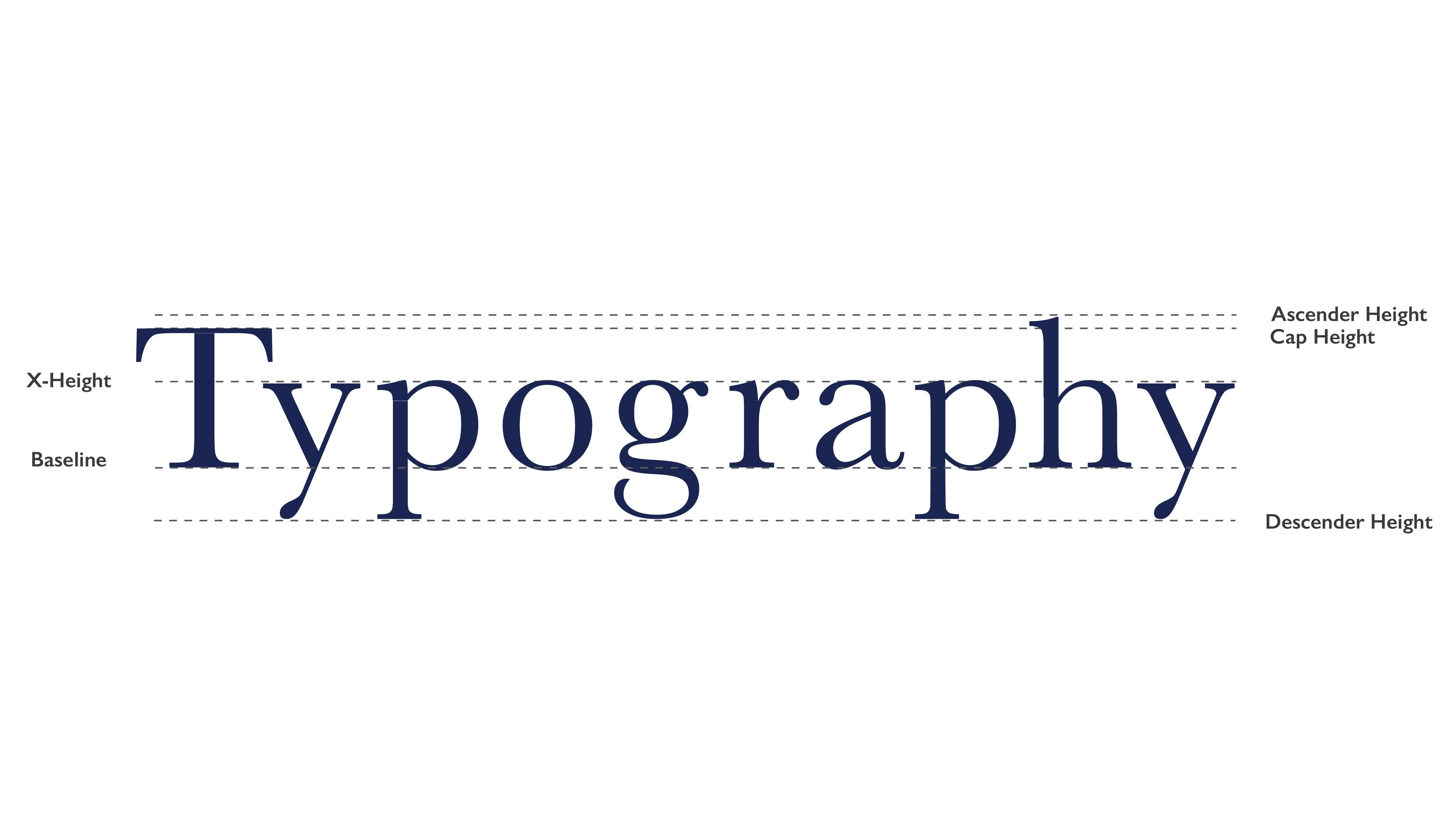Get Familiar With Type Anatomy Yes Im A Designer