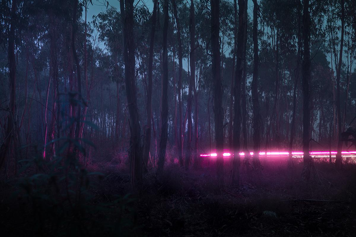 social media pictures pink light