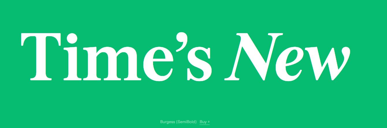 times new  serif