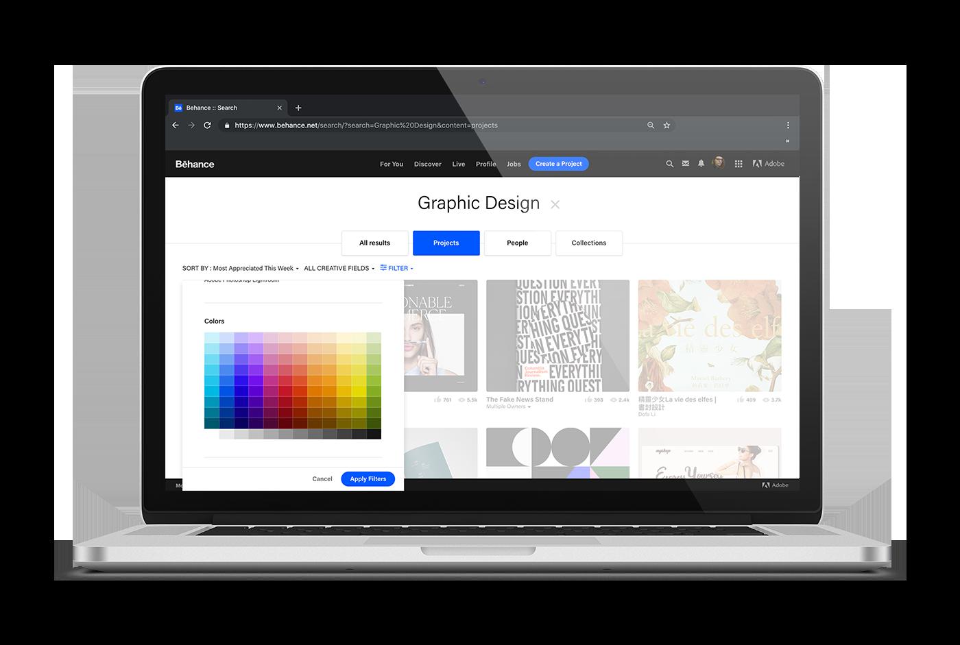 color search design portfolio